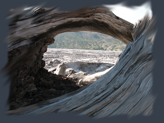 Cosmic Driftwood